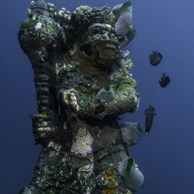 buceo-bali-amed