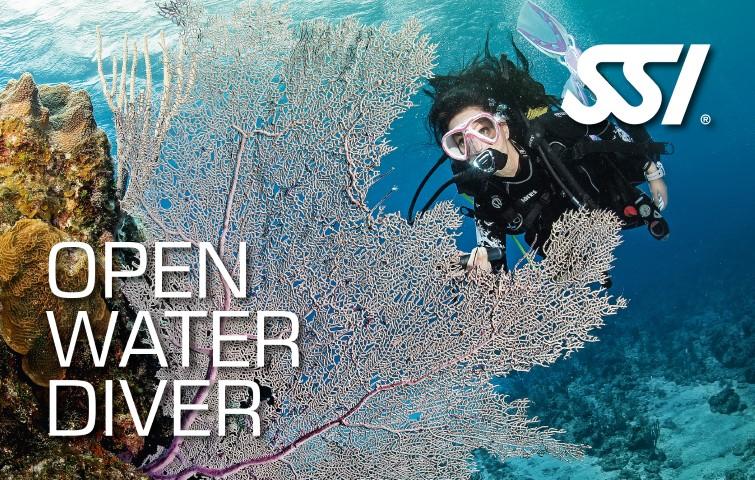 Open Water Diver en Bali