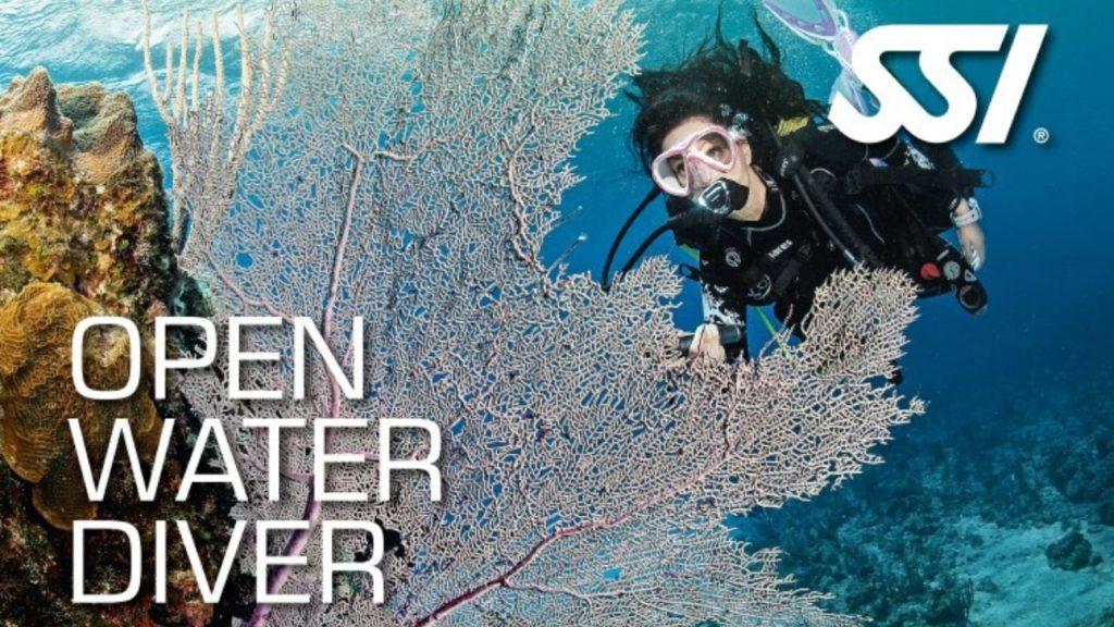 open-water-diver-en-Bali